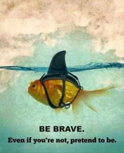 motivational-quotes-brave.jpg