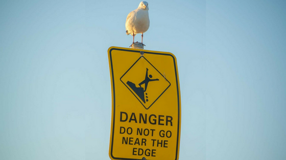 bird on danger sign.png